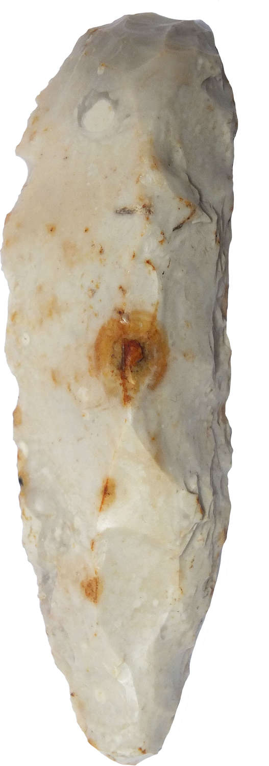 A Neolithic flint tool, possibly a fabricator, found in Sussex